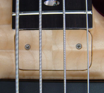 Continuous truss rod cover