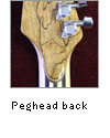 peghead back