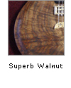 Superb Walnut