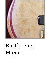 Bird's-eye Maple