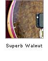 Superb Walnut