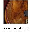 Watermarked Koa
