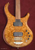 Burl Maple
