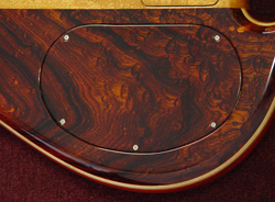 Continuous wood backplate