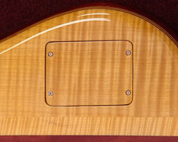 Continuouswood backplate
