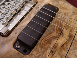 Ebony pickup cover