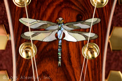 Dragonfly inlay